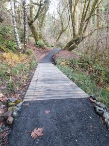Puncheon Bridge accross a marshy area on lower Amy's Trail on Crestmont Land Trust in Benton County Oregon